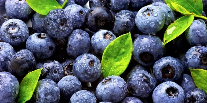11 Slimming Foods for All Dieters Blueberries
