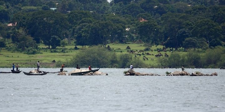 5 Places Where Swimmers Should Never Go Lake Victoria Africa