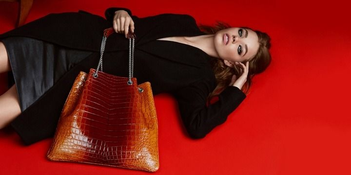 8 Most Luxurious Handbags for Ladies in 2017