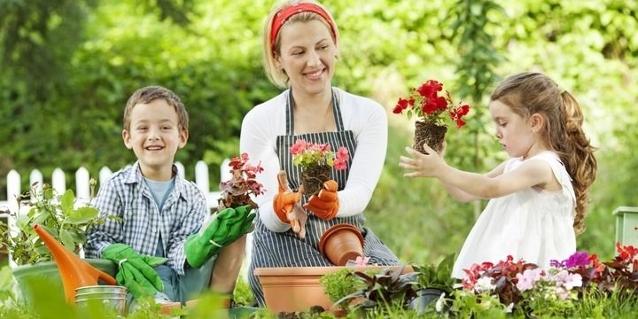 7 Useful Ways To Spend Free Time While Gardening