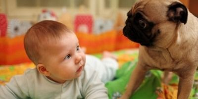 10 Reasons To Let Your Child Keep A Pet