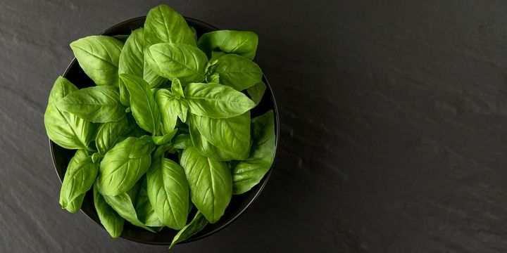 5 Foods to Store in Room Temperature Basil