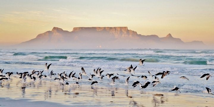 7 Countries Where Your Life Partner Might Be Found Cape Town